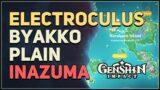 Byakko Plain Electroculus Genshin Impact